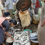 Fisherman in Goa